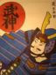 shogun-sama