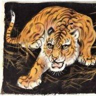 Old Happy Tiger