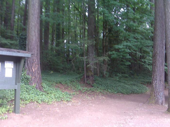 Path around the lake.