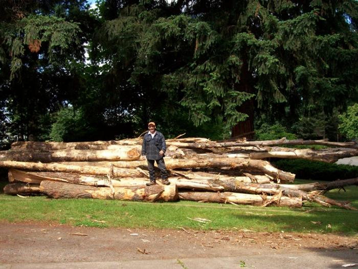"""The end result - the model is 5'7"""" (5'6"""" without the Timberlands). That pile is twice as deep as it is high, so you can imagine the pile of logs on our city corner lot."""