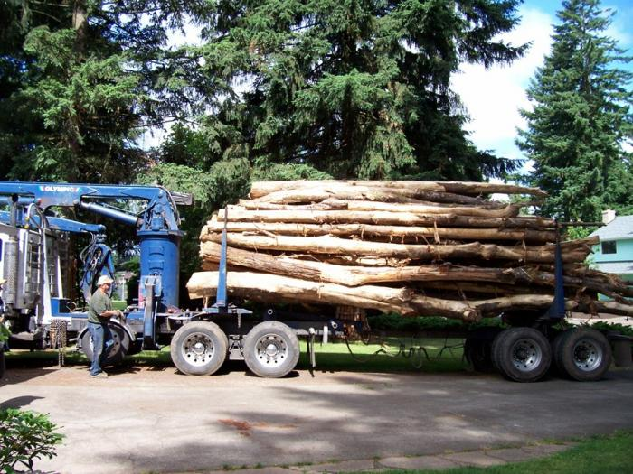 The load arrives - how many people have had a log truck on their driveway?? C'mon?? Well ... for a city-born gal, this was a big deal for me.