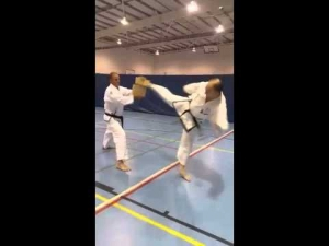 2 Boards Spinning heel kick